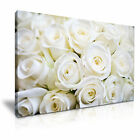 FLOWER Rose 3 1-L Canvas Framed Printed Wall Art ~ More Size