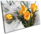 Flowers In Snow Floral SINGLE CANVAS WALL ART Picture Print VA