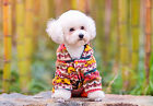 Apparel costumes Ethnic orange clothes Winter Hoodie Jumpsuit  For pet dog poppy
