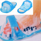 JML Shower feet Cleaner Scrubber Washer Available in Pink and Blue  - 90140