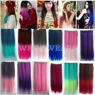 60cm Colorful Long Gradient Ombre Hair Extensions Curly Straight 5 Clips FKS