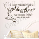 I Knew When I Met You Adventure Wall Decal Vinyl Sticker Classic Winnie The Pooh
