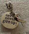 Cancer Awareness Ribbon Keyring Necklace European Clipon Never give up CN120