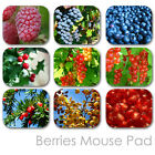 BERRIES CUSTOM MOUSE PAD GARDEN PERSONALIZED PHOTO FAMILY MOUSEPAD  (BM-03)
