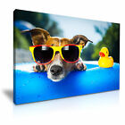 DOG RUBBER DUCK Funky Canvas Framed Print 2 ~ More Size
