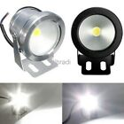 DC12V 10W LED Garden Wall Flood Light Lamp Spotlight White/Warm White/RGB