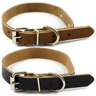 New Stylish Real Leather Dog Collar Plain Skin w engraving plate M L