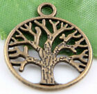 Wholesale 8/16/24 Bronze Plated Tree Charms Pendants  20x24mm