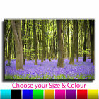 Bluebell Woods LANDSCAPE CANVAS Wall Art Print Picture Various Sizes 15