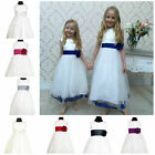 FLOWERGIRL DRESS BRIDESMAID PETALS KIDS BABY WEDDING PRINCESS GIRLS DRESS FLORA