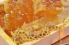 Wild Mountain Honey Soap / Candle Making Fragrance picture