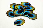 30/500pcs Embroidered Cloth Iron On Patch Sew Motif Applique peacock eye blue