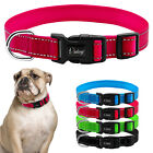 Nylon Reflective Puppy Dog Collars Durable for Small Large Dogs 4 Colors S M L
