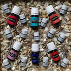 Young Living Essential Oil Samples SINGLES (Lavender) 1 & 2 ml BUY MORE SAVE 20%