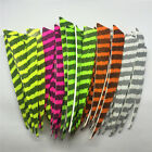 "50pcs 5"" Right Wing Floral Fletch Real Feathers Archery Arrow Accessories C1"