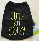 Cute But Crazy Dog Shirt - Xs Or S - Black & Yellow - Top Paw - Nwt