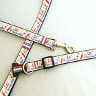 Cutie Pie Pets~Patriotic Red Blue Firecracker~ Rhinestone Dog Pet Collar + Leash