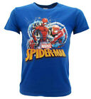 T shirt Spiderman Originale Marvel blu royal