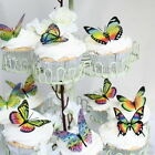 Butterfly Cake Toppers or Decorations - Rainbow