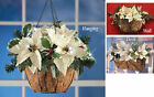 Led Indoor Or Outdoor White Poinsettia Basket, by Collections Etc