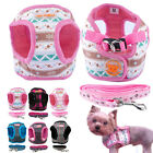 Small Dog Harness and Leash set Soft Harness Vest Lead for Puppy Chihuahua S-XL