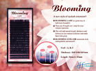 Blooming Lashes Curl C