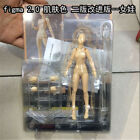Women Men Mannequin Figures Jointed Doll Decor Painting Artist Drawing Sketch