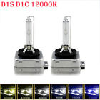 2x D1S 35W Xenon Headlight Bulbs HID 85410 AUDI BMW MERCEDES Replacement PHILIPS <br/> 660+ sold!!! BEST QUALITY! ! SUPER BRIGHT  !!!