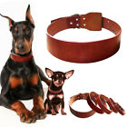 Genuine Plain Leather Dog Collars Heavy Duty for Small Large Dogs Walking XS-XXL