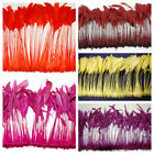 "BURNT COQUE FRINGE 6-12"" Tall Feathers MANY COLORS Pads/Halloween/Hats/Craft"