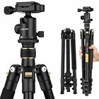 Best Head For DSLR Camcorders - K&F Concept Professional Compact Camera Tripod&Ball Head Travel Review