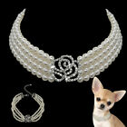 Cute 4 Rows Pearl Dog Necklace Pet Puppy Collars for Chihuahua Yorkie White S-L
