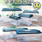 Kyпить Dragon PET PLAZA Faunabox  Kunststoff Terrarium Faunarium  на еВаy.соm