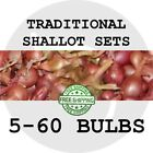 2018 SHALLOT BULB SETS - Traditional - Spring Planting! FREE SHIPPING! SEEDS!