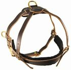 Dean & Tyler The Cowboy Leather Tracking Pulling Dog Harness with Brass Hardware