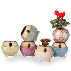 Cute Owl Faces Ceramic Flower Pot Chinese Glazed Planter Desk Gardening Diy 242