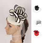 Race Wedding Veil Flower Fascinator Pillbox Hat Lady Hair Band Headband Clip