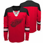 NHL Detroit Red Wings Perennial Long Sleeve Crew Jersey Shirt Top Youth Kids $24.27 USD on eBay