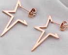 NEW ROSE GOLD SILVER STAINLESS STEEL OPEN HOOP XMAS STAR EARRINGS   UK SELLER