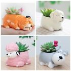Pug Dog Flower Pot Succulent Plant Planter Resin Flowerpot Home Garden Decor