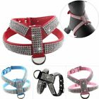 Elegant Style Dog Harness Chest Strap With Rhinestone Design Pin Buckle Closures