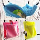 New Bird Parrot Pet Bite Toy Chew Toys Swing Cages For Cockatiel Parakeet