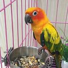 Stainless Steel Hanging Food Water Bowl For Crate Cages Coop Dog Parrot Bird Pet