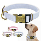 Personalised Nylon Dog Collar Pet ID Name Tag Engraved for Small to Large Dogs