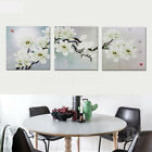 3x 30*30cm/40*40cm Frameless Magnolia Waterproof Canvas Pictures Wall Art Home