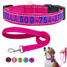 Embroidered Dog Collar and Dog Lead Reflective Personalised Dog ID Name Collars