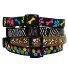 Nylon PUPPY DOG COLLAR Webbing ADJUSTABLE ClipOn BUCKLE