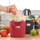 Portable Insulated Thermal Cooler Lunch Box Bento Tote Picnic Storage Case Mp