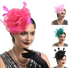 Wedding Halloween Party women lady hair accessory large clip hat veil fascinator