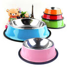 Heavyweight Non-Skid Rubber Bottom Stainless Steel Dog Bowl for All Size Dogs